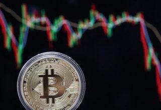 Bitcoin Cash humb terren, bie nën 290 dollar