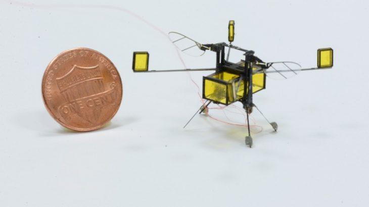 Një robot në madhësinë e një insekti mund të fluturojë nga ajri në ujë