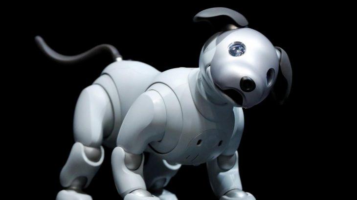 Sony nxjerr në shitje robotin qen për 2,899 dollarë