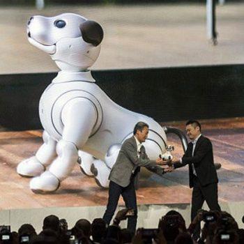 Qeni-robot që shpërfilli shefin e Sony-t para publikut