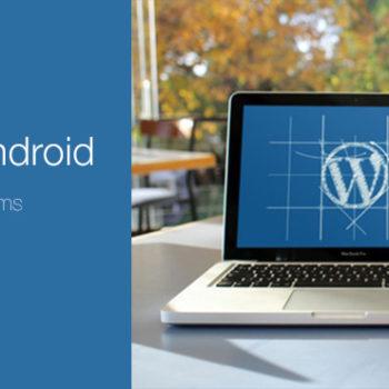 WordPress fuqizon 30% të uebsajteve