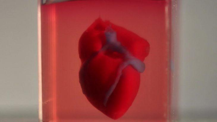 Shkencëtarët printojnë një zemër 3D me material qelizor
