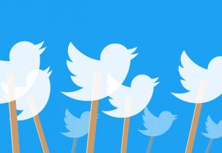 Numri i përdoruesve të Twitter ngel në vend