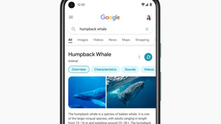 Google ridizajnon kërkimin në platformat mobile