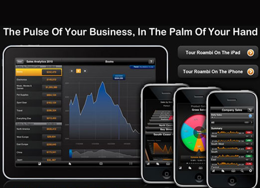 Roambi: business intelligence